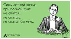 Сижу летней ночью при полной луне, не спится... не спится... не спится бы мне.. / открытка №154224 - Аткрытка / atkritka.com