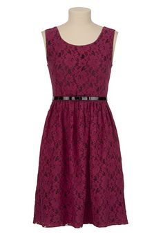 Belted Contrast Lace Dress