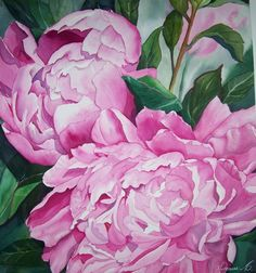 Peonies in watercolor