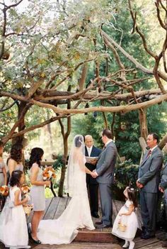 For a rustic wedding - wood wedding ceremony arch with white orchid and rose decor. Description from pinterest.com. I searched for this on bing.com/images