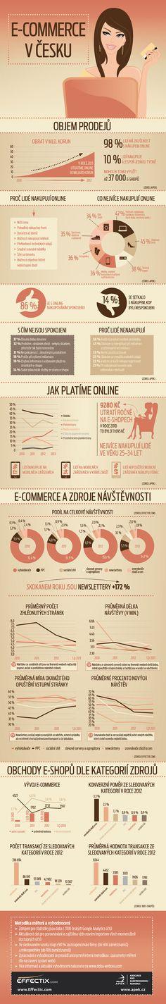 Jak wygląda czeski rynek internetowy w 2013 r.