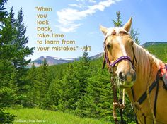 """Looking Back by Montana Horse Trailers   """"When you look back, take time to learn from your mistakes."""" -ArT"""