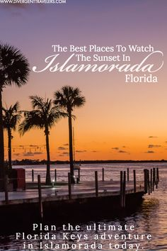 Plan an epic vacation of things to do in Islarmoada guide. Top activities, tours, places to stay, best restaurants, travel tips & more. Vacation Deals, Mexico Vacation, Cruise Vacation, Disney Cruise, Islamorada Florida, Destin Florida, Florida Usa, Travel Couple, Family Travel