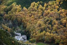 50 natural destinations which should always be fall - Forest of Galicia: beautiful polychrome Oh The Places You'll Go, Countryside, River, World, Nature, Outdoor, Beautiful Scenery, Forests, Landscapes