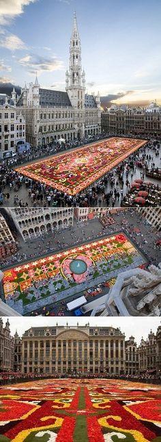 Flower carpet in Brussels