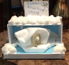 Jahleel's Polar Bear World  (diorama of a mammal) for his first grade school project, we had a great time making it.
