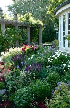 afternoon light on a perennial garden