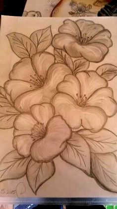 mit bleistift My first pencil draw Pencil Drawings Of Flowers, Flower Art Drawing, Flower Sketches, Art Drawings Sketches Simple, Pencil Art Drawings, Drawing Tips, My Drawings, Pencil Sketching, Pencil Drawing Tutorials