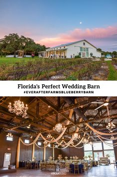 Click to find out more about Florida's best wedding venues! Affordable, Simple Inclusive Pricing Stress-Free Wedding Planning #EverAfterFarmsBlueberryBarn Cute Wedding Ideas, Free Wedding, Perfect Wedding, Our Wedding, Florida Wedding Venues, Best Wedding Venues, Wedding Locations, Navy Yellow Weddings, Romantic Themes