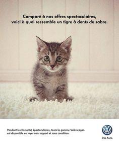 Les (Instants) spectaculaires de Volkswagen