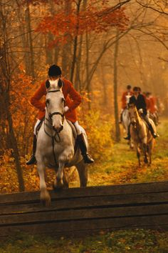 The breeze of heaven, Flows through his mane, He gallops through my heart, And back again. -by Jessica Fankhauser