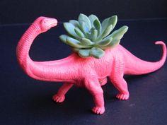 dinosaur + succulent = love