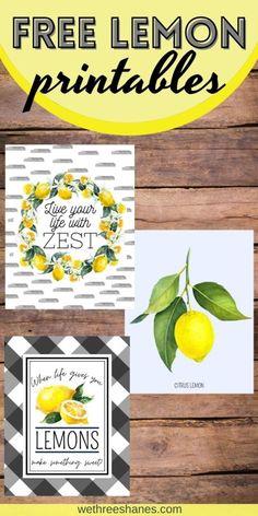 Free Lemon Art Prints   We Three Shanes