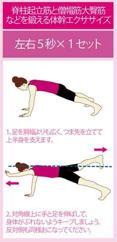 体幹トレーニングって痩せるの?運動パフォーマンスが上がるの??そんな疑問にお答えしつつ、体幹トレーニングの具体的なやり方を図解付きでご紹介しています。
