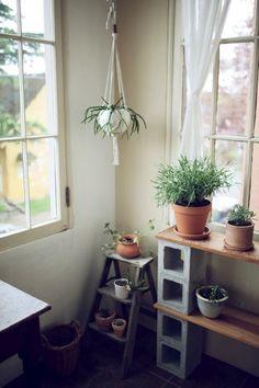 cinder block shelves for sun room. Cinder Block Shelves, Cinder Blocks, Interior And Exterior, Interior Design, Living Spaces, Sweet Home, New Homes, Room Decor, Wall Decor