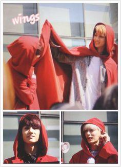 141011 #보이프렌드 Minwoo, Youngmin & Donghyun at Music Core Mini Fanmeeting #WITCH (cr: wings9095)