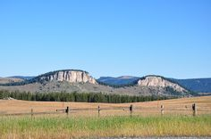 JD's Scenic Southwestern Travel Destination Blog: Bighorn National Forest ~ Rt 14 to Dayton, Wyoming...