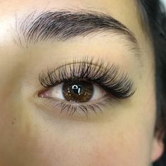 Custom Hybrid C-Curl Set Hybrid Lash Extensions Curl Lashes, Fake Lashes, Volume Lashes, Long Lashes, False Eyelashes, Eyelash Extensions Styles, Volume Lash Extensions, Eyebrows, Skin Products