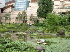 Mori Art Museum in Tokyo. Travel guide to Japan Tokyo Travel Guide, Roppongi Hills, Tokyo Museum, Sea Of Japan, Visit Tokyo, Island Nations, Tokyo Japan, Pacific Ocean, Top Ten