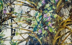 "morning glory wrapped around palmetto / bermuda  16"" x 22""  micheal zarowsky / watercolour on arches paper / (private collection)"
