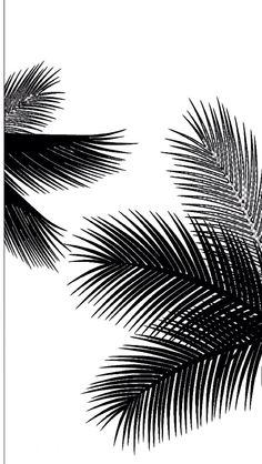 best wallpaper for iPhone Get Good Black Wallpaper for Smartphones Today Black Wallpaper Iphone, Screen Wallpaper, Nature Wallpaper, Black Backgrounds, Wallpaper Backgrounds, Mode Poster, Black And White Aesthetic, Black And White Pictures, Black And White Leaves