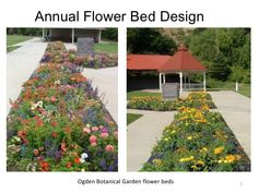Annual Flower Bed De