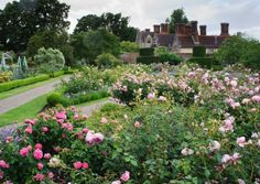 The rose garden at Borde Hill in Sussex is glorious in summer. Credit: Howard Rice.
