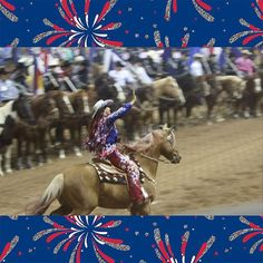 Fallon riding Hollywood in Grand entry from the 2015 NFR!! #fallontaylor #hollywood #NFR15 #rodeofashionistas #glamandgrit ❤️ @fallontaylor2 Fallon Taylor, La Mans, Champions Of The World, Blue Wedding Dresses, Lil Baby, Barrel Racing, Cowboy And Cowgirl, Horse Girl, Horse Stuff