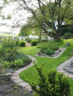 Landscape in a terraced garden. Slopes and pathways.