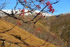 Höst på Åreskutan – en vandring från guld i dal till snö på topp