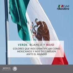 Verde, Blanco y Rojo #EsMiBandera #DíaDeLaBandera #México