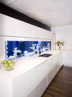 Blue aquarium in the white kitchen.  I could stare at it all day!  #DesignPinThurs