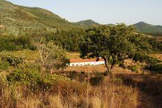 Monte Vale de Porcas de Baixo