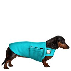 Shop quality lightweight breed-specific Tummy Warmer dog vest for Miniature Dachshunds. Snug fitting polar fleece belly warmer keeps back and tummy warm. USA made. Standard Dachshund, Dachshund Breed, Black Dachshund, Dapple Dachshund, Dachshund Sweater, Daschund, Small Dog Coats, Small Dogs, Small Breed