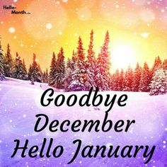 Goodbye December Hello January Hello January Quotes, Hello March, January Month, New Month, New Year Wallpaper, Calendar Wallpaper, January Images, Welcome Quotes, January Bullet Journal