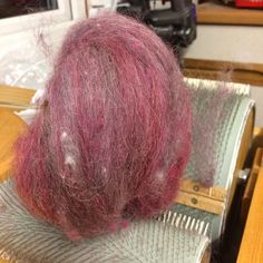This Gotland a 2015 shear from @magpie_and_goblin is as light as a feather first two passes through the carder - as its #strictlycomedancing  how much sparkle should I add ?