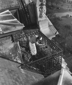 Willy Ronis, L'arrosage des fleurs, Hôtel Claridge, avenue des Champs-Élysées, Paris, 1948
