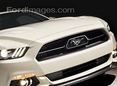 Fordimages.com - 50th Anniversary Mustang : Posters and Framed Art Prints Available