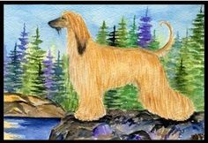 Afghan Hound Indoor / Outdoor Floor MAT 18 X 27 Inches by Caroline's Treasures. $26.99. INDOOR / OUTDOOR FLOOR MAT This is available in either 18 inch by 27 inch Action Back Felt Floor Mat / Carpet / Rug that is Made and Printed in the USA. A Black binding tape is sewn around the mat for durability and to nicely frame the artwork. The mat has been permenantly dyed for moderate traffic and can be placed inside or out (only under a covered space). Durable and fade resist...