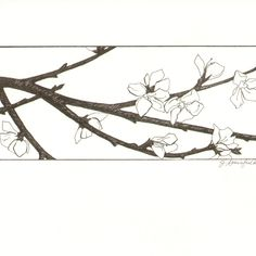 cherry blossom line drawing | Sakura- Cherry Blossom Miniature Pen and Ink Drawing by Jennifer ...