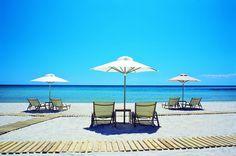 Sani - beach with sand dunes and fine white sand; beach in Kassandra, Halkidiki Sani Beach, Dune, Greece, Patio, World, Places, Outdoor Decor, Summer, Hero