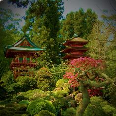 Golden Gate Park, Japanese Garden, one of my favorite places in San Francisco