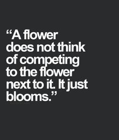 Bloom Where You're Planted - GF