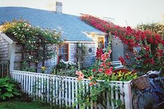 sea captains houses and rose covered cottages nantucket