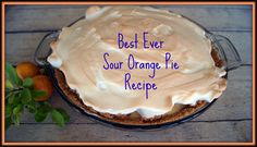 Doesn't get super cold. Used oranges we found growing wild in the woods . Authentic Florida - Best Ever Sour Orange Pie made with Seville oranges pluck from wild trees! Sour Orange Pie Recipe, Orange Pie Recipes, Just Desserts, Delicious Desserts, Dessert Recipes, Yummy Food, Key Lime Cookies, Florida Food, Coffee Dessert