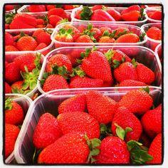 Strawberry Fields 4ever