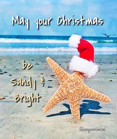 may your Christmas be sandy and bright!