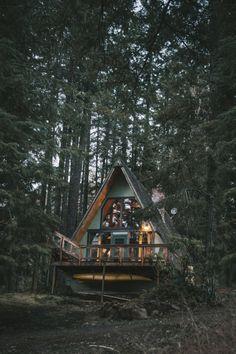 Cabin Fever ~