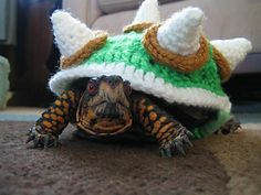 Bowser Costume for a Box Turtle by Jennifer Olivarez -  This pattern is available for free. Turn your turtle into Bowser from Super Mario Bros! This costume is made by crocheting 7 hexagons, 7 cones, and 7 I-cords and sewing them all together to create a spiked shell like the famous King Koopa's. With this on his back, your turtle will be the toughest pet on the block.  For more information, see: http://wp.me/p2PSM6-jU