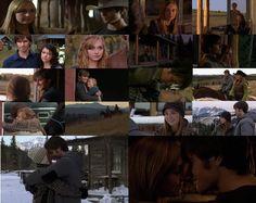 Ty And Amy, Heartland Cast, Funny Disney Memes, Amber Marshall, Healing Heart, Season 12, It Cast, Hearts, Hollywood